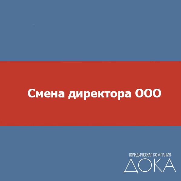 Смена директора ООО. Смена руководителя ООО - 3200 руб.